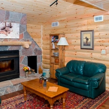 living room log siding