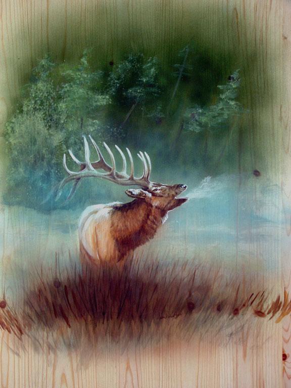 01Deb Elk