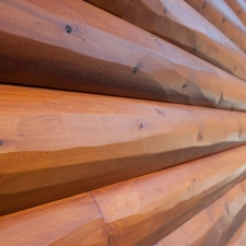 04-Log-siding_Hewn_Butternut