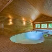 3x10 Cedar Log Siding & 1x6 Cedar Paneling Pool Room