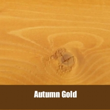 Ultra 2 Autumn Gold-815