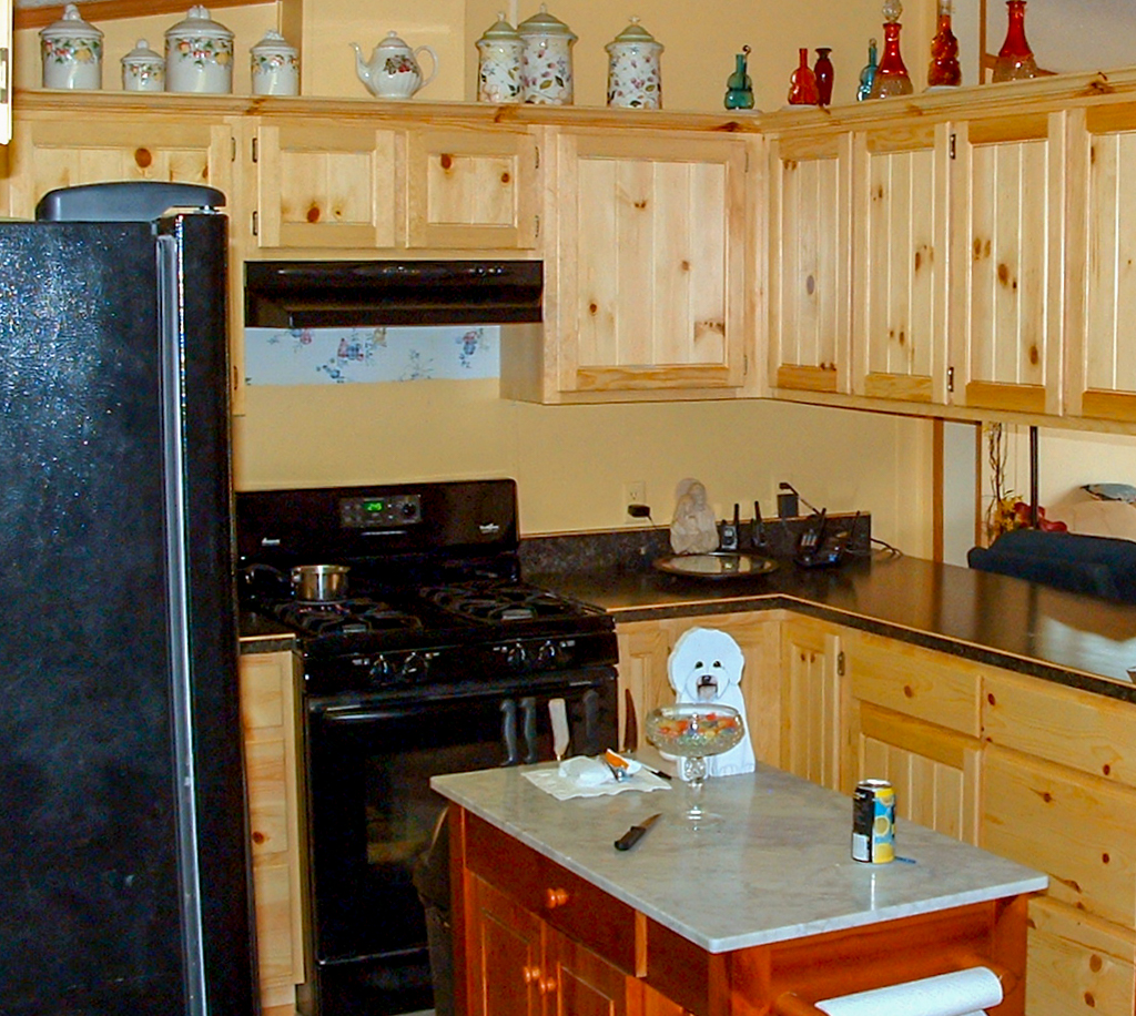 Knotty Pine Panel Insert Kitchen