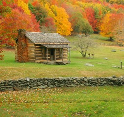 The Advantages of Living in a Log Home