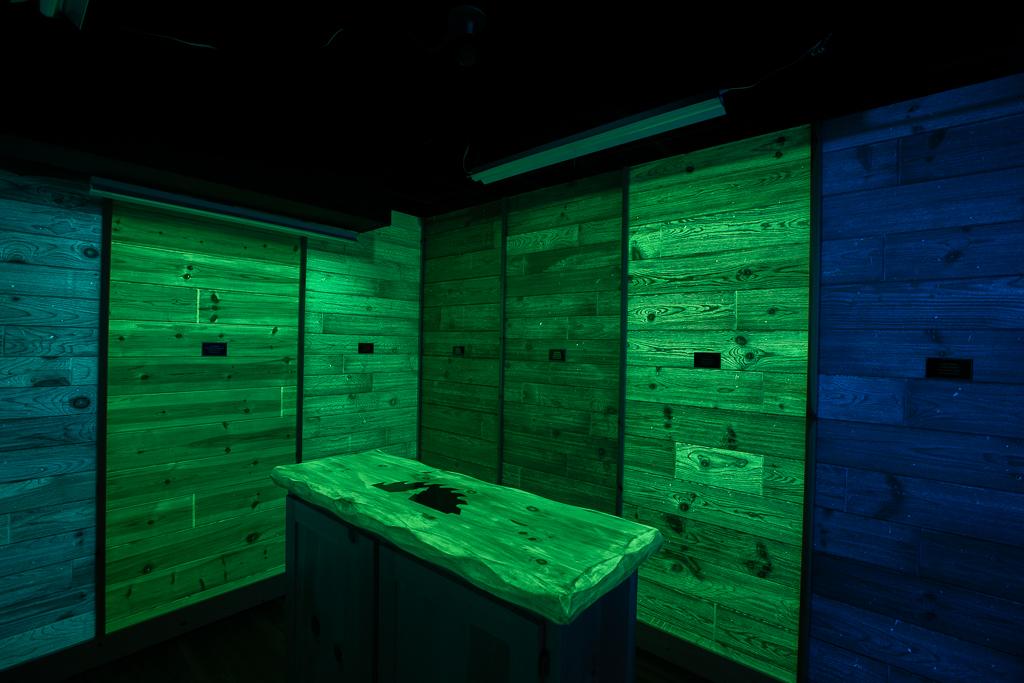 Lumi-wood Room - Lights Off